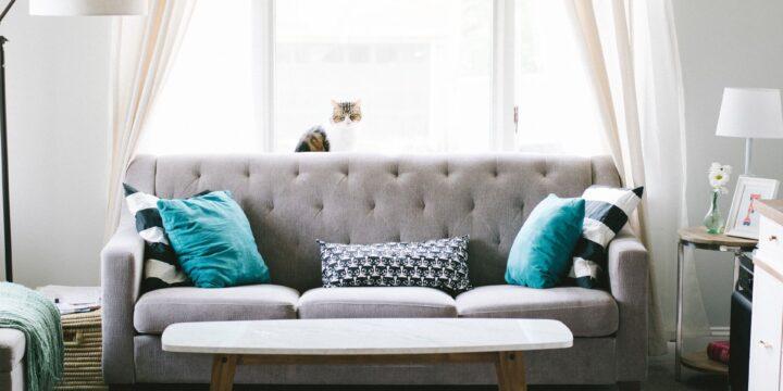 Knusse kussens kooptips voor een fijn interieur